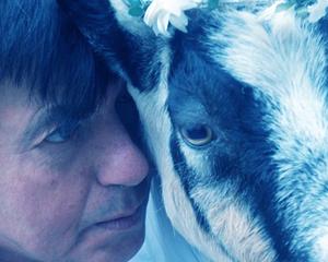 Die Ziege oder Wer ist Sylvia? (2014)